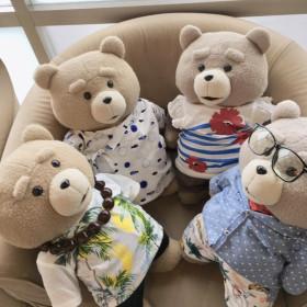 癒し係 TED
